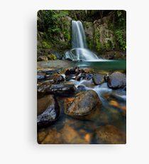 Waiau Falls Rocks Canvas Print