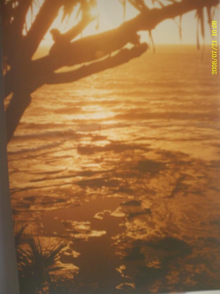 sunshine sunrise by rozmitchell
