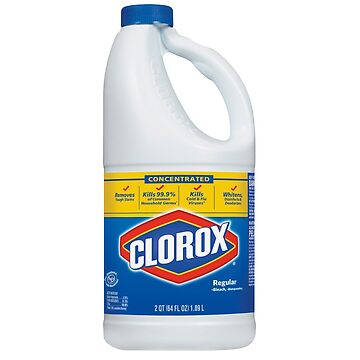 CLOROX BOTTLE by dishess