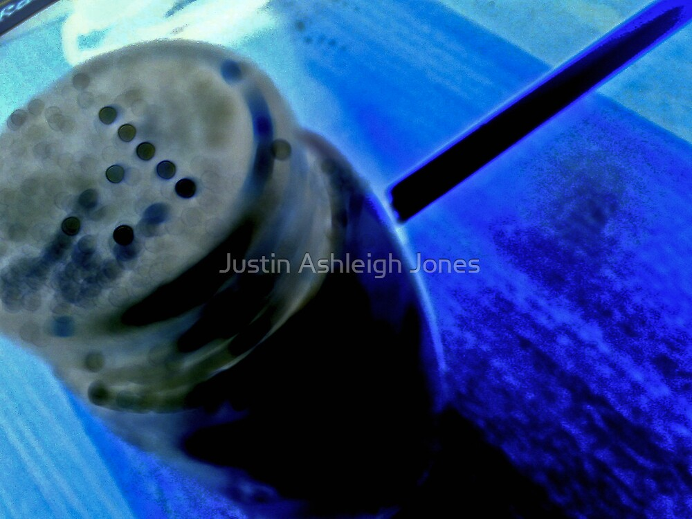 Blue Pepper by Justin Ashleigh Jones