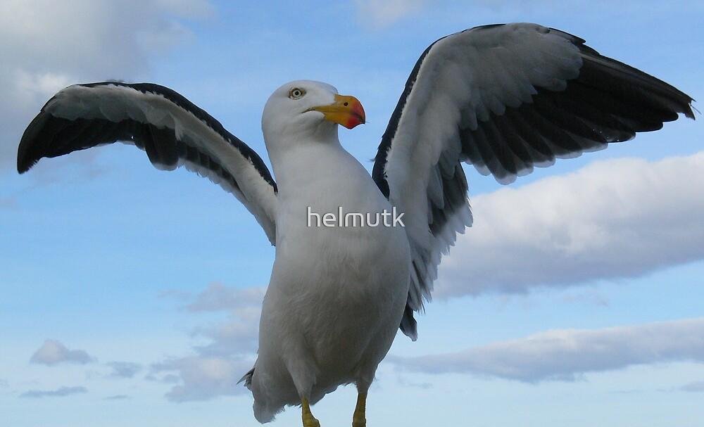 LOOK AT ME by helmutk
