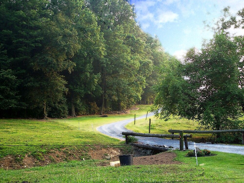 Down a Country road by Judi Taylor