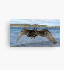 GET OUT OF MY WAY Canvas Print