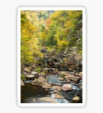 Tallulah Gorge Sticker