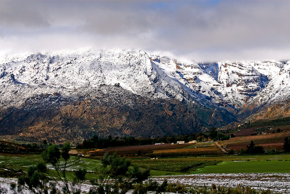 Snow Dusted Valley by Vanessa  MacLeod