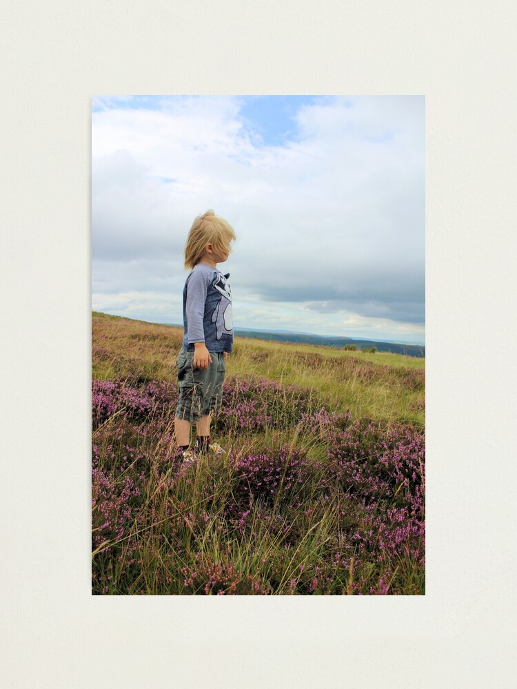 Alternate view of Looking out over the heather Photographic Print