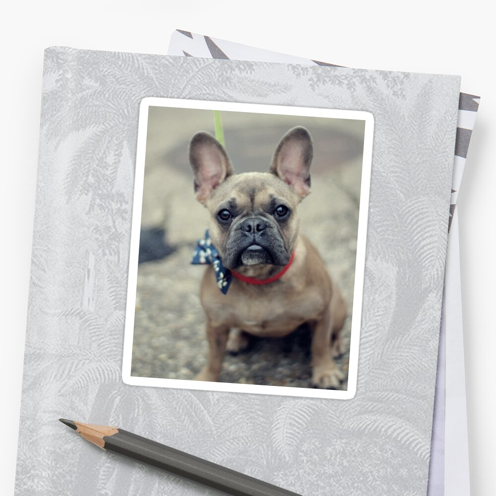 French Bulldog Puppy Stickers By Irahwong Redbubble