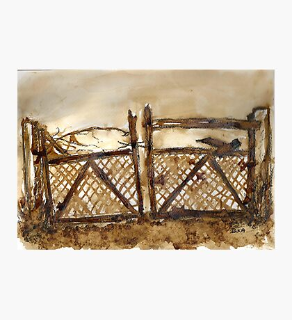Old Gate Photographic Print