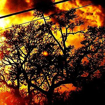Season's Blaze: 'Abstract' with Creepy Tree III by kristinsharpe
