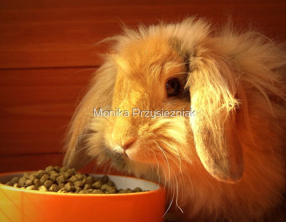 Rabbit #2 by CornyMistick