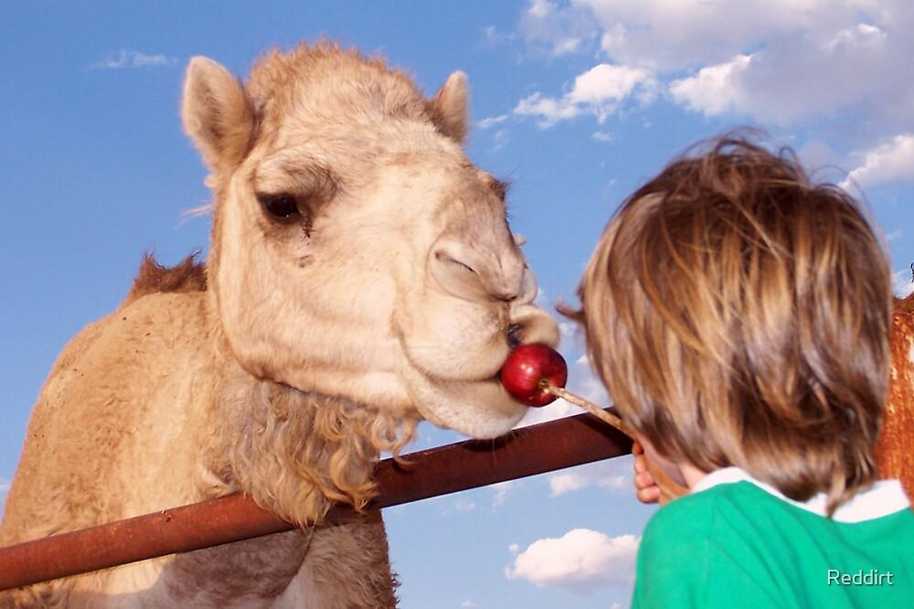 Apple kiss by Reddirt