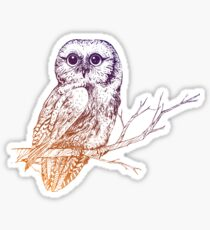 """Owl Be Seeing You"" Sticker"