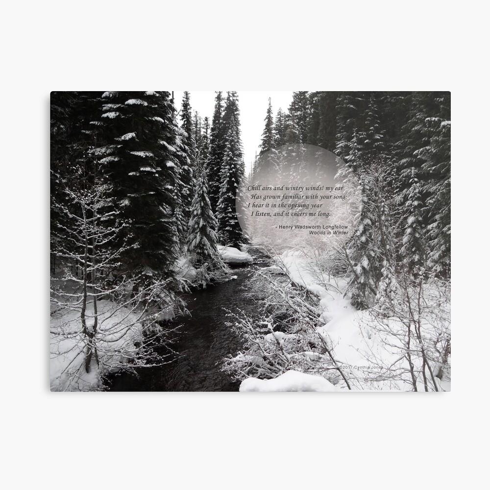 Wälder im Winter Metallbild