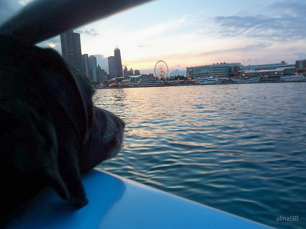 Looking out at Navy Pier, Chicago by alina98