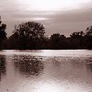 Perfect Lake View 1 by steelwidow