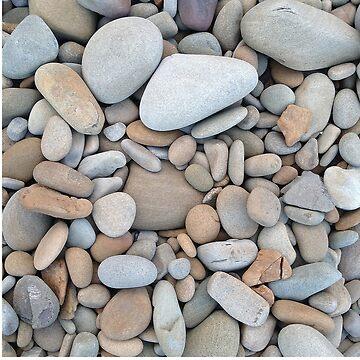 Beach Rocks by markhiggins