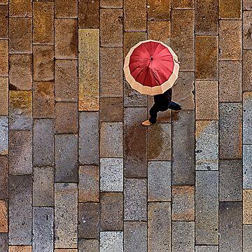 Galician Shower. Obradoiro Square, Santiago de Compostela by markhiggins