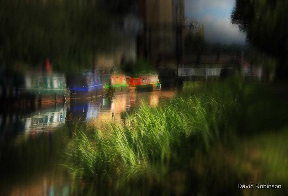 Narrow Boats by David Robinson