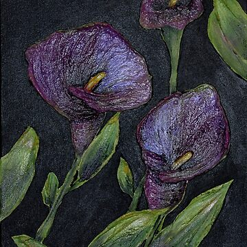 Purple Calla Lilies by LindaCorbitt