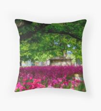 ~ Resting Place ~ Throw Pillow