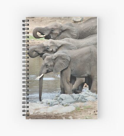 AT THE WATERHOLE - THE AFRICAN ELEPHANT – Loxodonta africana Spiral Notebook