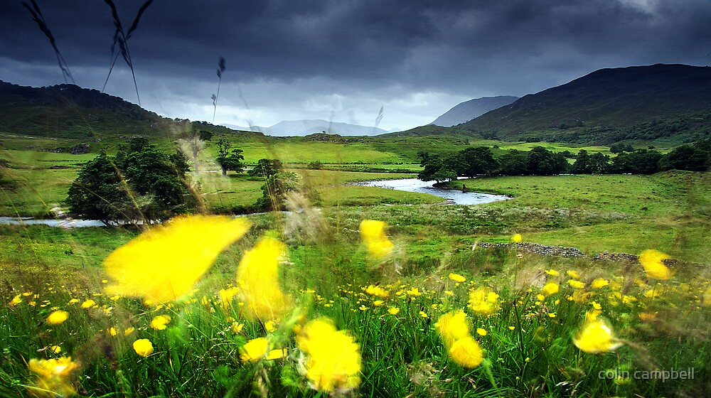 The noise in the hills as the wind swept through... by colin campbell