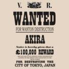 Destroying Tokyo by Lauren Glover