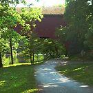 Winding Path by Jen29