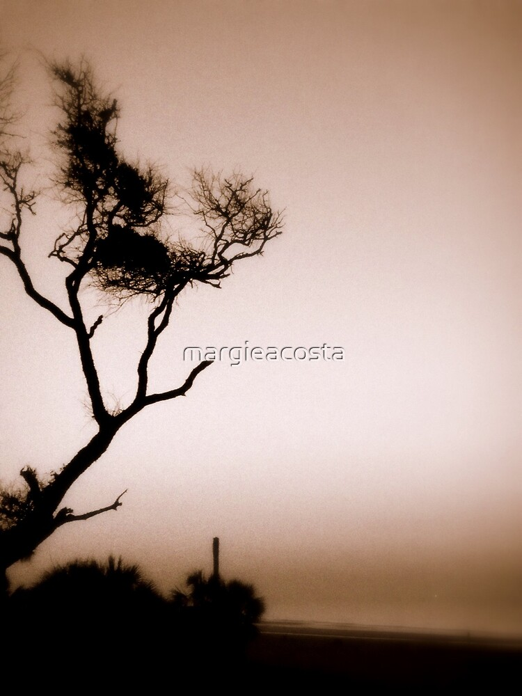 Silence by margieacosta