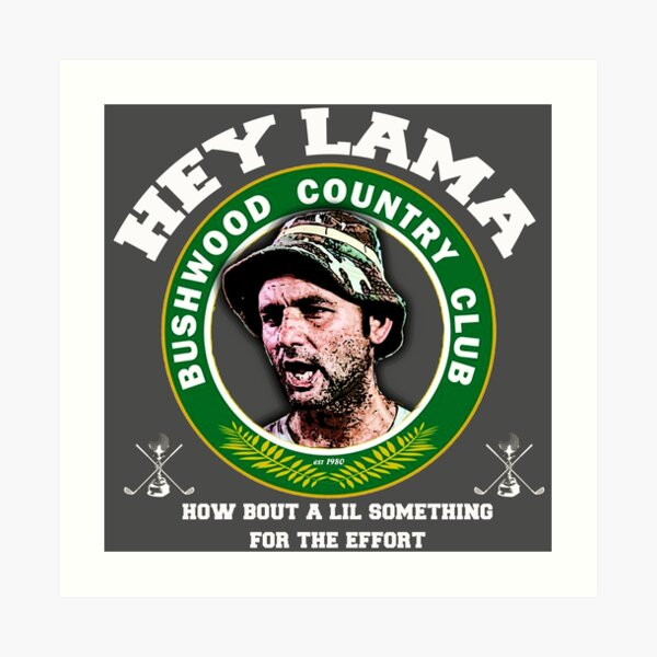 Hey Lama how bout a lil something for the effort Art Print