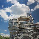 Belvedere Castle by Sarah McKoy