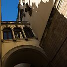 Barcelona's Marvelous Architecture - Shapes and Shadows by Georgia Mizuleva