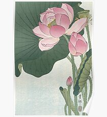 Lotus Flower - Japanese Block Print Poster