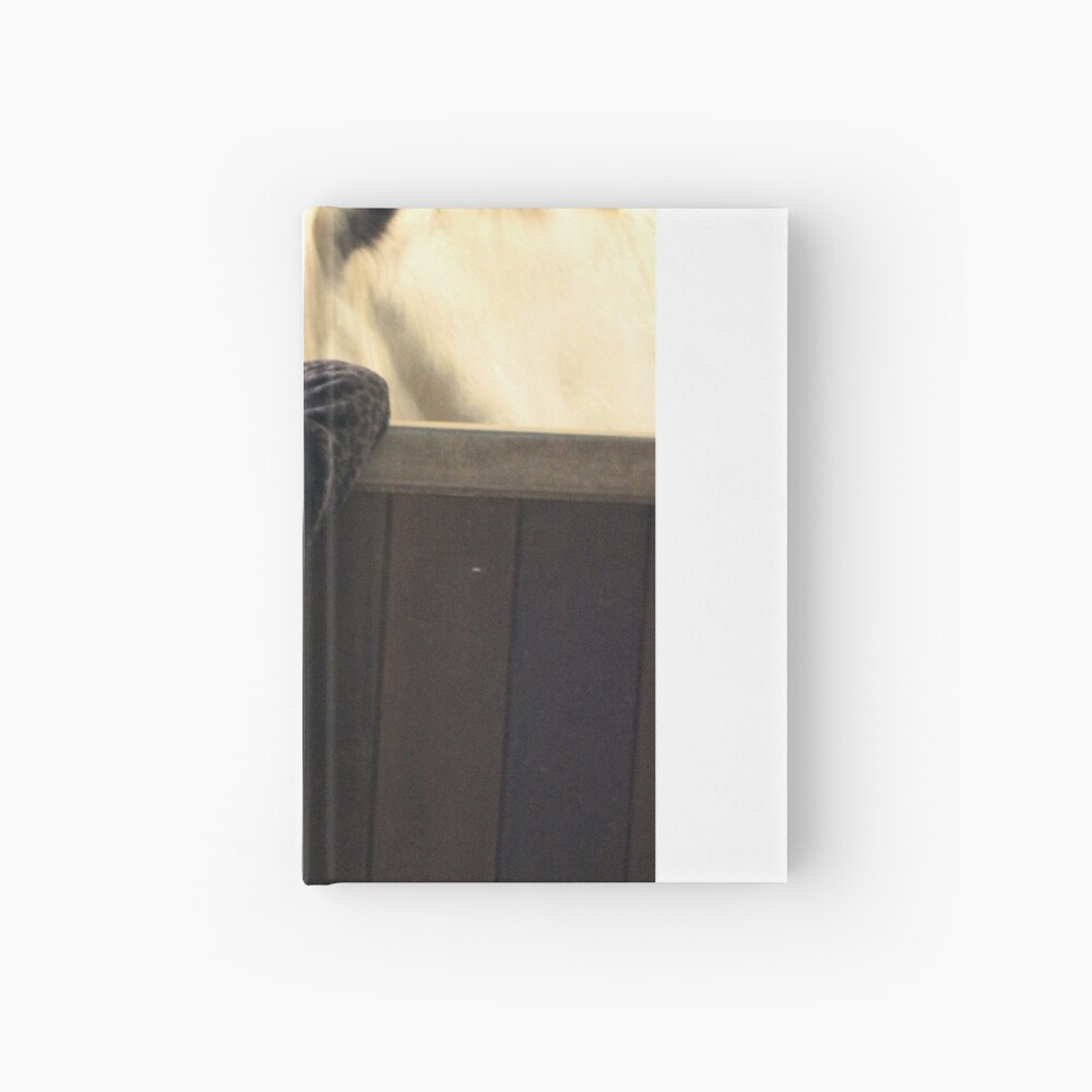 New friends Hardcover Journal