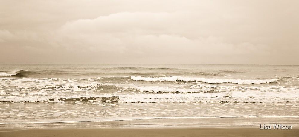 Ebb & Flow by Lisa Wilson