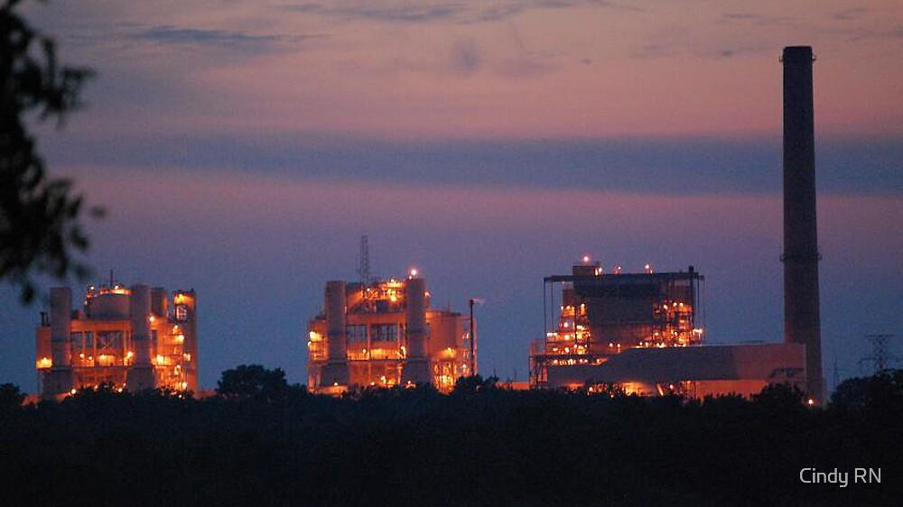 Seminole Power Plant by Cindy RN