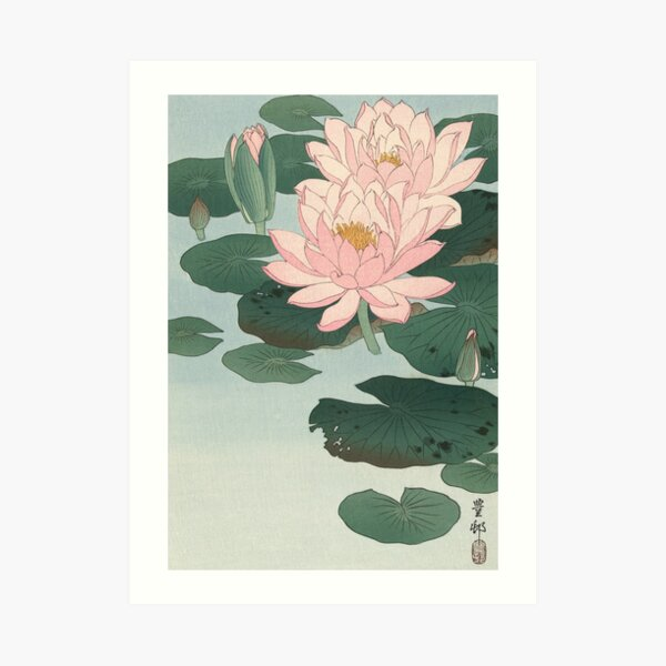 Flowering Water Lily, Ohara Koson Art Print