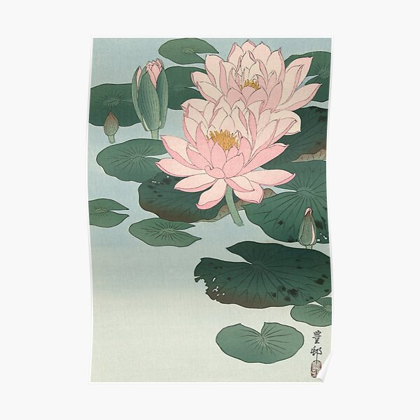 Flowering Water Lily, Ohara Koson Poster