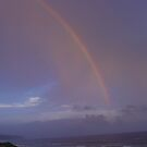 Rainbow.... by Ila80
