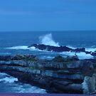 The Coast by Ila80