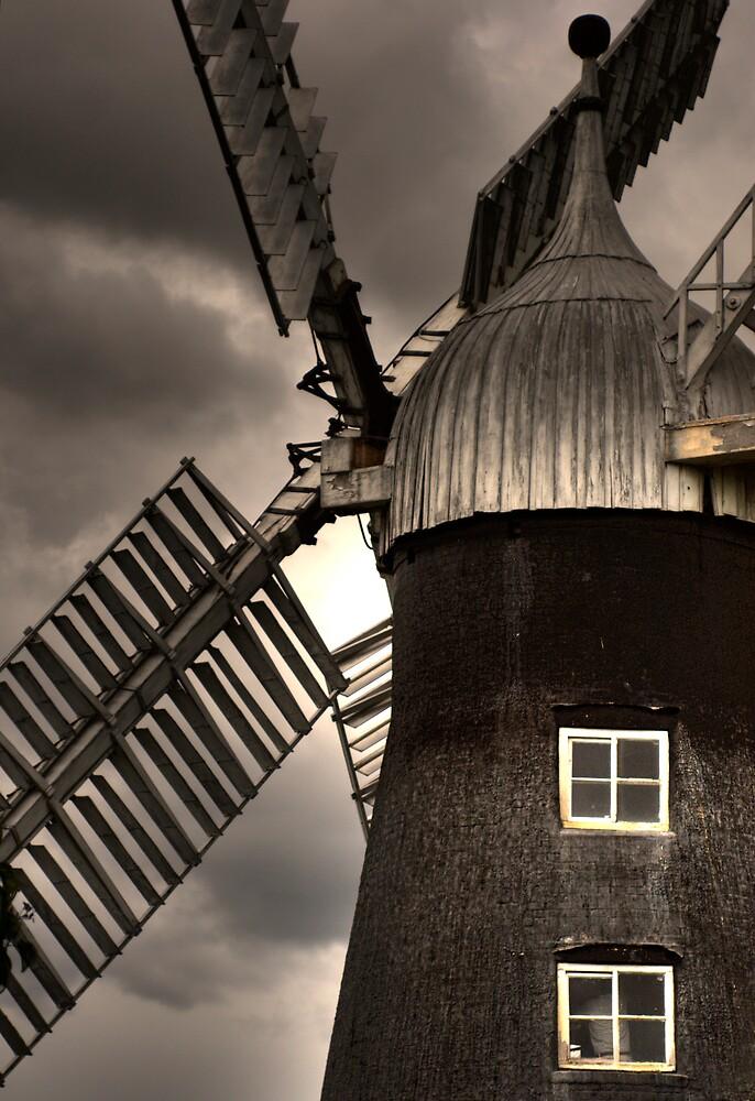 Windmill by Ann-Marie Metcalfe