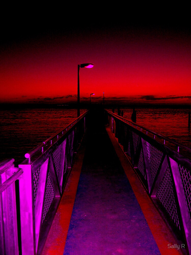 Entering the Red Zone by Sally R