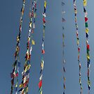Buddhist Prayer Flags by Matthew Duke