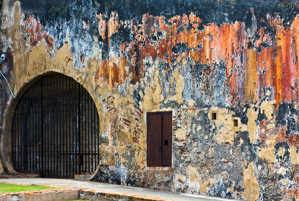 Old Doorways 1 by David Chappell