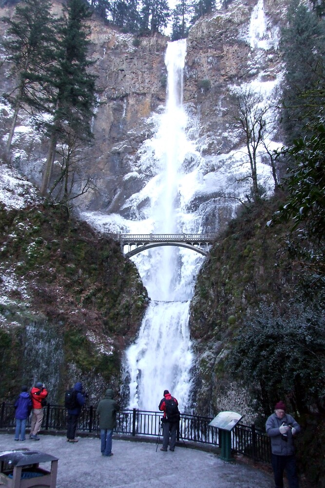 Multnomah Falls in Winter by Patricia Shriver