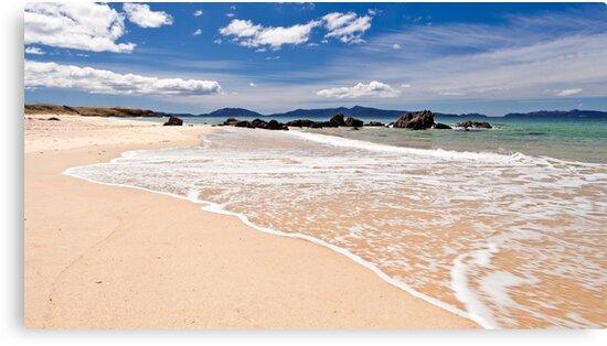 Cressy Beach-2 Tasmania by Tim Wootton