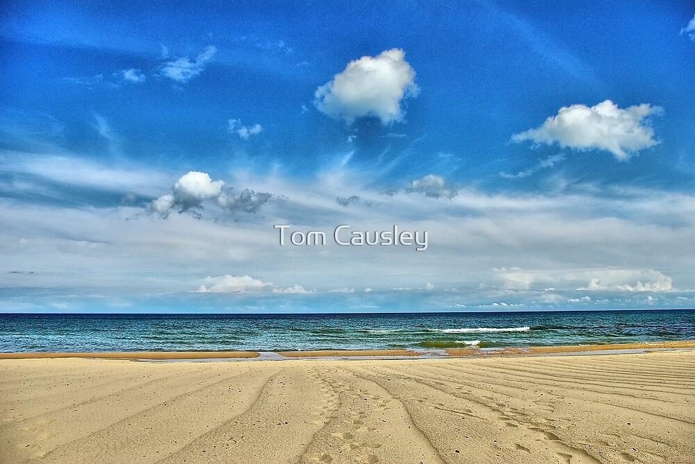 Quot Lake Huron Oscoda Beach Michigan Quot By Tom Causley