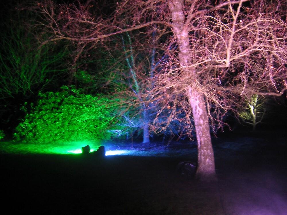 Enchanted Garden by KatieBird