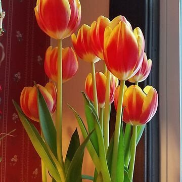 Petals Three by veronicafiasco