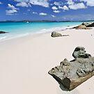 Betty's Beach by Tim Wootton